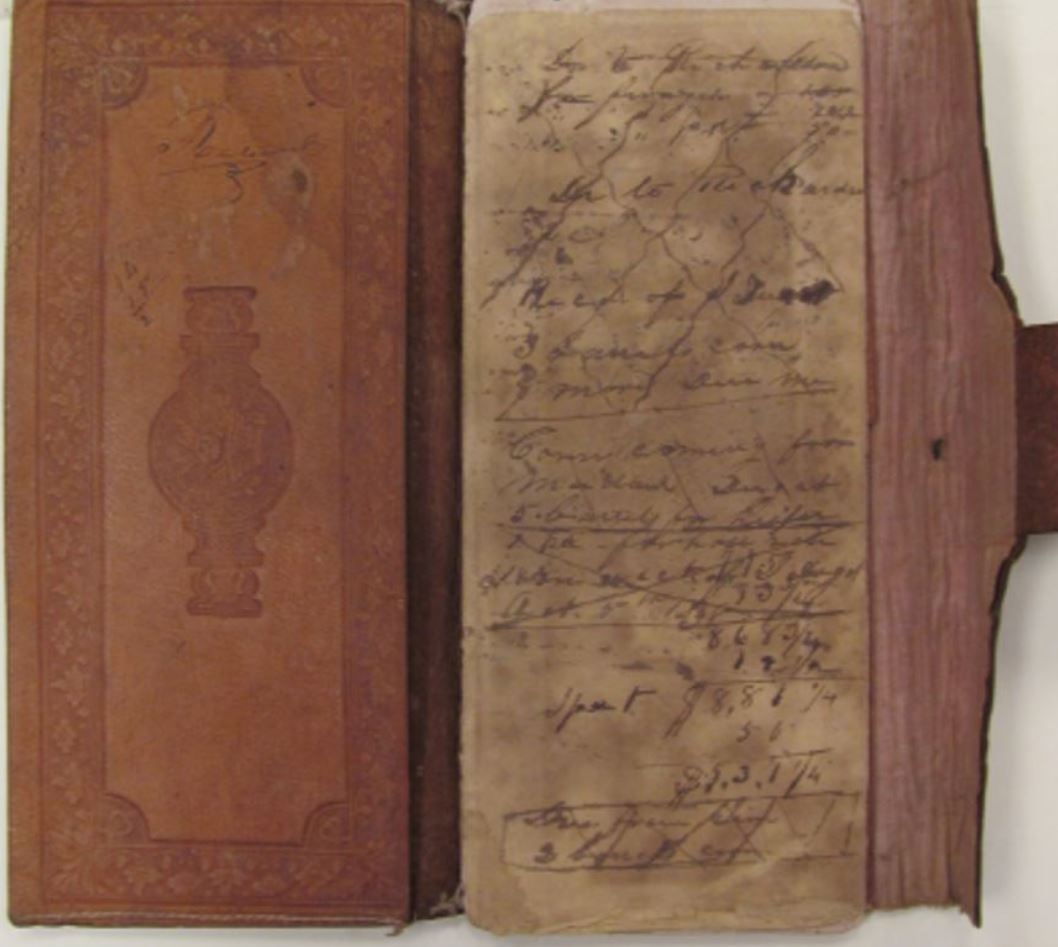 County Histories, diaries, journals and manuscripts online and in print